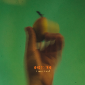 Seed To Tree — I Wouldn't Mind